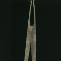 Shears picture 1 (1).jpg