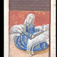 shearing 9.jpg